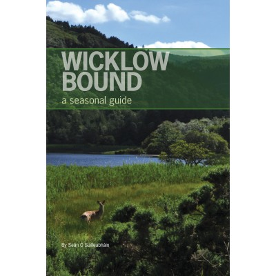 COMING SOON—Wicklow bound: a seasonal guide